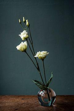 Weiße Rose in Glasvase vor blauem Hintergrund von Jenneke Boeijink