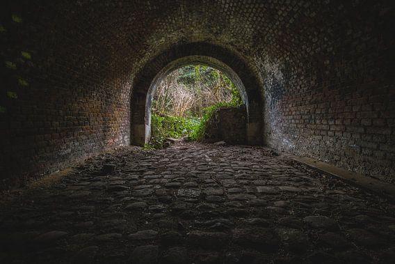 Er is licht aan het einde van de tunnel van Steven Dijkshoorn