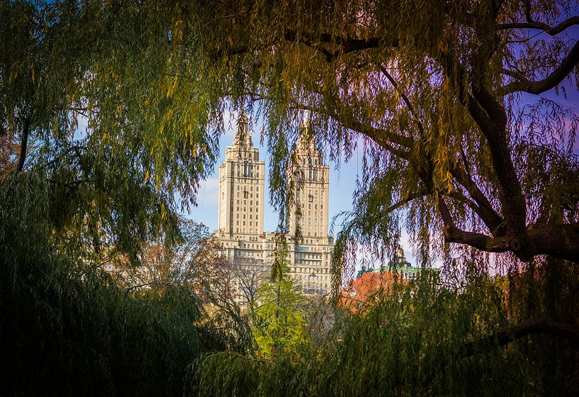 Central Park, New York van Maarten Egas Reparaz