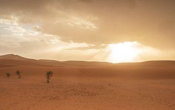 Sonnenlicht Sahara-Wüste (Erg Chegaga - Marokko) von Marcel Kerdijk