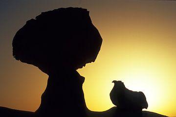der hahn in die weisse wüste von Stefan Havadi-Nagy