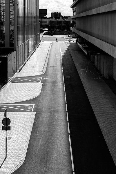 Shadows Divided van Thomas van Galen