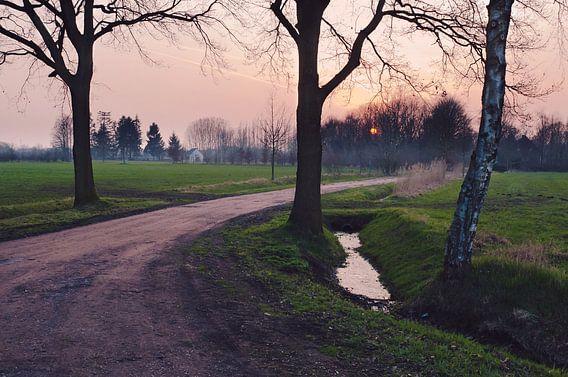 Boerenweg van Tommy Köhlbrugge