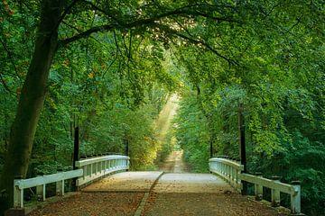 Pont à Bliss sur Lars van de Goor