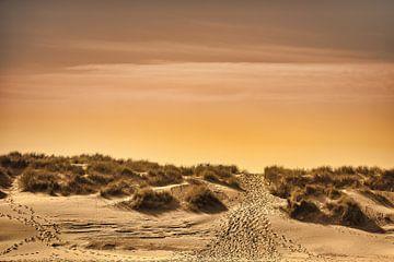 Het pad naar het strand van Rik Verslype