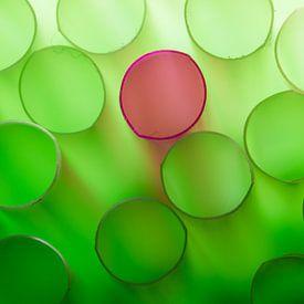 Groene rietjes met een rode daartussen van Mark Scheper