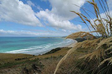 Neuseeländische Küste mit blauem Himmel und Wolken von Marco Leeggangers