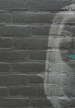Vrouw op de muur van Ans Bastiaanssen