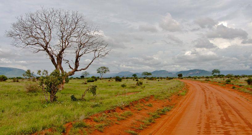 Red Road van Alex Hiemstra