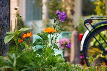 Frühling in Amsterdam von den Grachten aus von Evelien Oerlemans