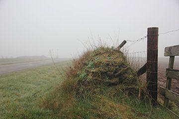 Texel Landschap 045 von Starworks Lien van der Star