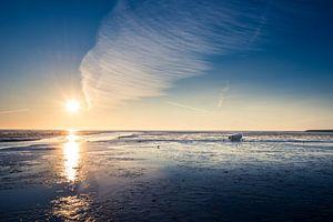 Ausruhen auf dem Wattenmeer van Hannes Cmarits