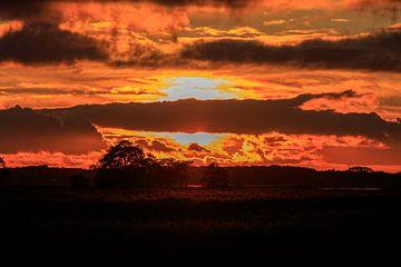 African Sunset von Wil de Boer