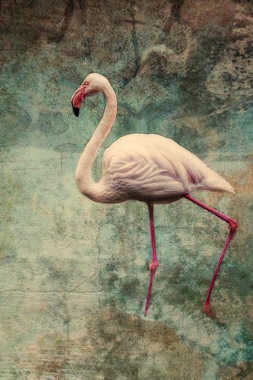 pink flamingo van Claudia Moeckel