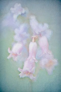 Hyacinten in pastel van Francis Dost