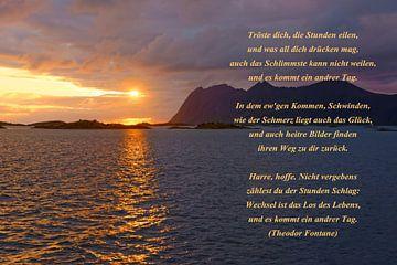 Comforting van Gisela Scheffbuch
