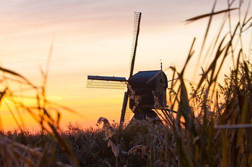 Dutch Winter Landscape