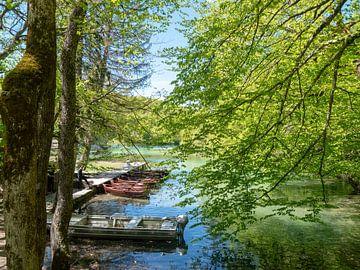 natuur Kroatië van ronald Bergen Bravenboer