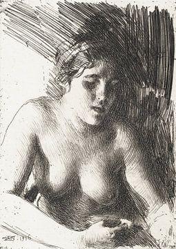 Büste, Anders Zorn (1916) von Atelier Liesjes