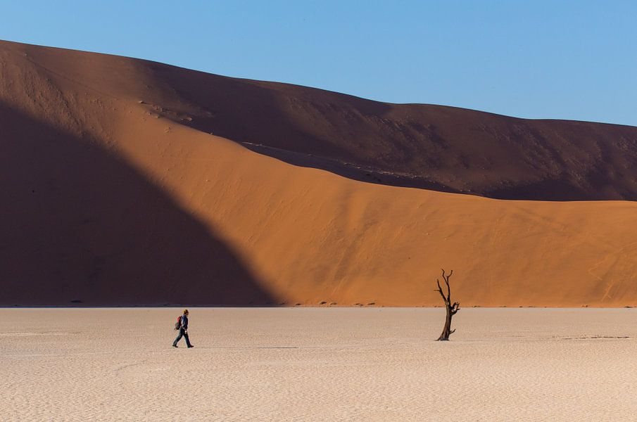 Deadvlei - Namibië van Eddy Kuipers