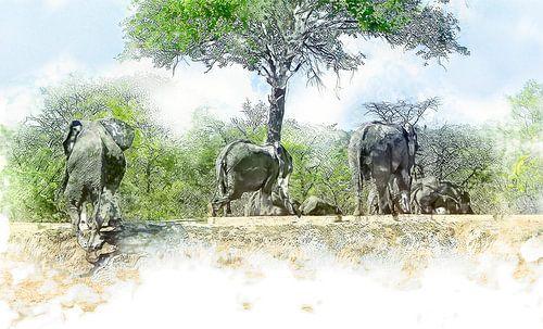 Olifanten trekken zich terug