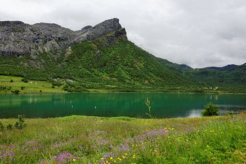 Eidsfjorden - ein Fjord in Norwegen von Gisela Scheffbuch