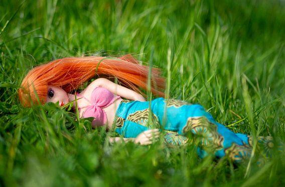 Pop met rood haar in het gras
