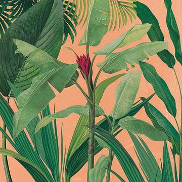 Dramatische tropische ik boho, Sue Schlabach van Wild Apple