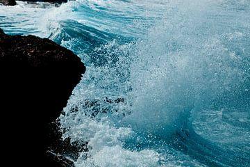 Wild water II van