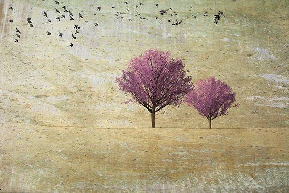 Twee kersenbomen met vogels