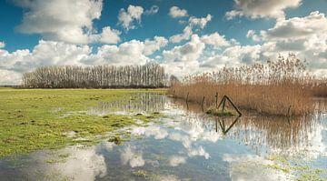Rivier de Oude Rijn  von Jeroen Kleverwal