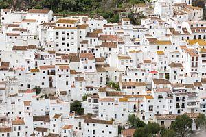 Spanje - Andalusië (Casares)
