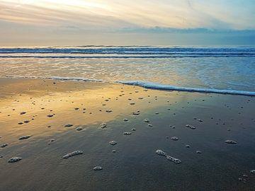 Verlaten strand von Nannie van der Wal