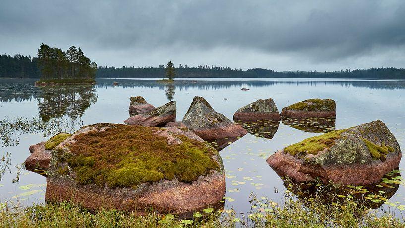 Zweden van Harro Jansz