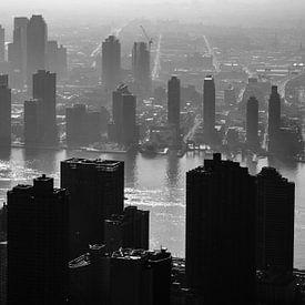 Uitzicht vanaf Empire State Building van Eddy Westdijk