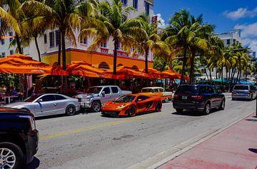 Het rijke leven in Miami Beach van