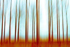 Into the Woods van