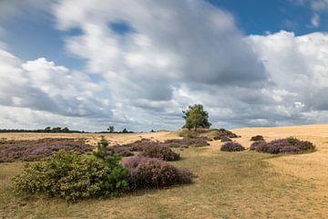 Dynamische wolkenlucht op de Hoge Veluwe von Karin de Jonge
