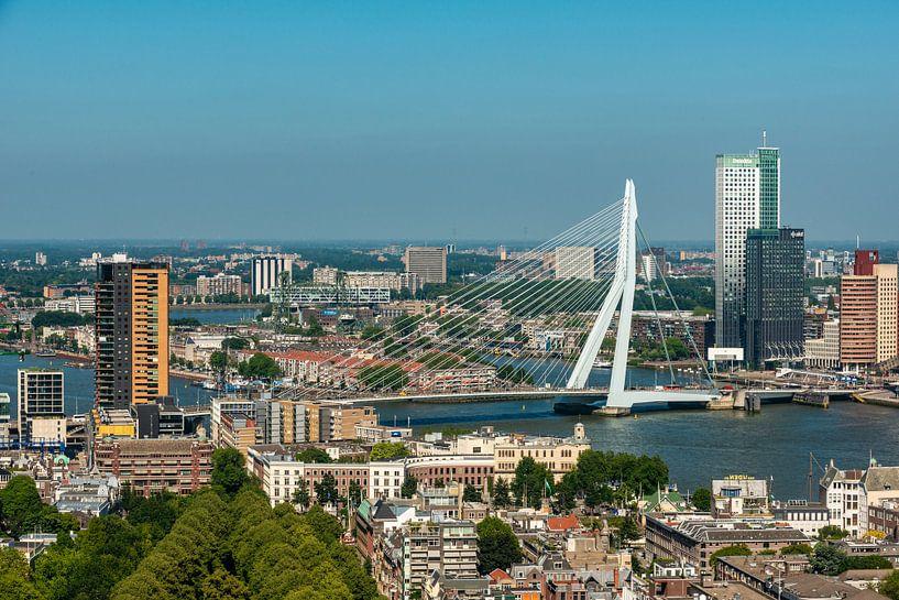 Rotterdam met de Erasmusbrug van Brian Morgan