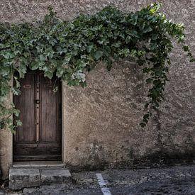 de deur. van Tilly Meijer