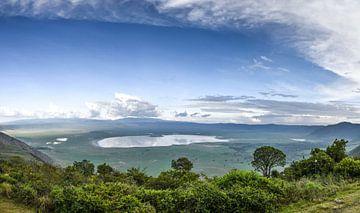 Ngorongoro-krater van Robert Styppa
