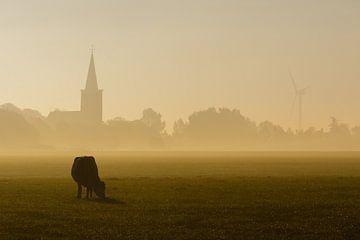 Koe in de Mist van Jaap Terpstra