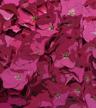 Roze Bloemen van Dirk van der Ven