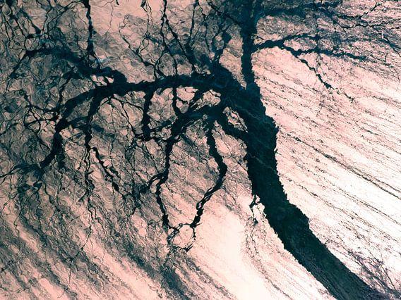 Tree Magic 17 van MoArt (Maurice Heuts)