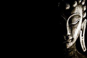 Buddha van Nico van der Vorm