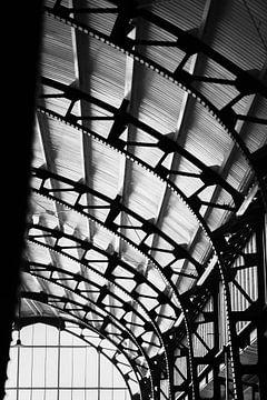 Plafond van Haarlem Station van Bart Rondeel