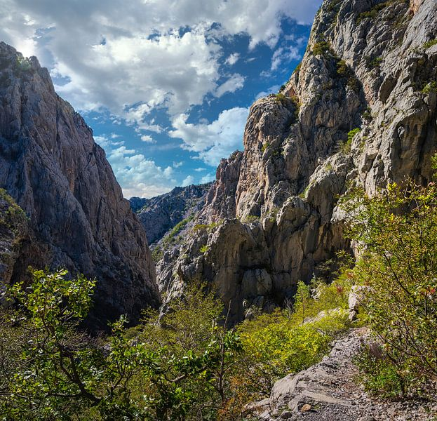 Kloof in Paklenica Nationaal Park, Kroatië van Rietje Bulthuis