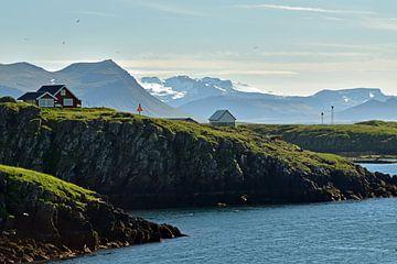 Fjord im sonnigen Island von Renzo de Jonge