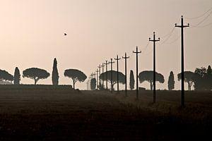 Toscane, 2008