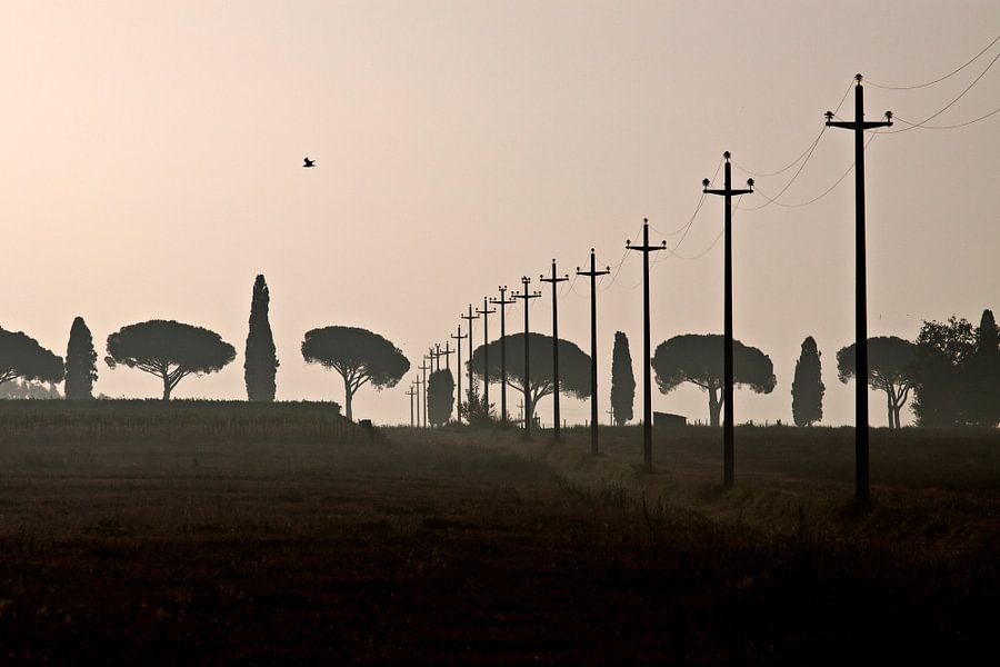 Toscane, 2008 van Arno Fooy